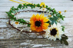 sunflower band